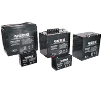 UPS Series Batteries