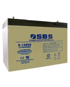S-12900 12V Battery